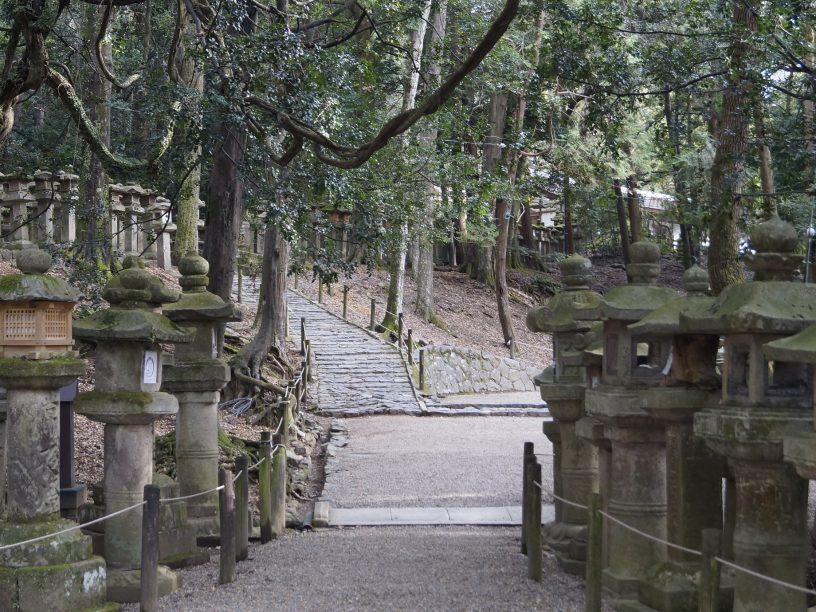 Lamparas de Kasugataisha
